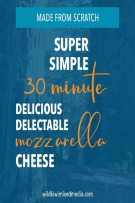 pinterest pin for homemade mozzarella cheese