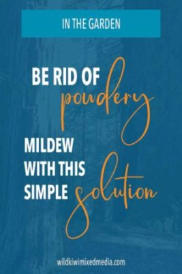 Pinterest pin for powdery mildew post